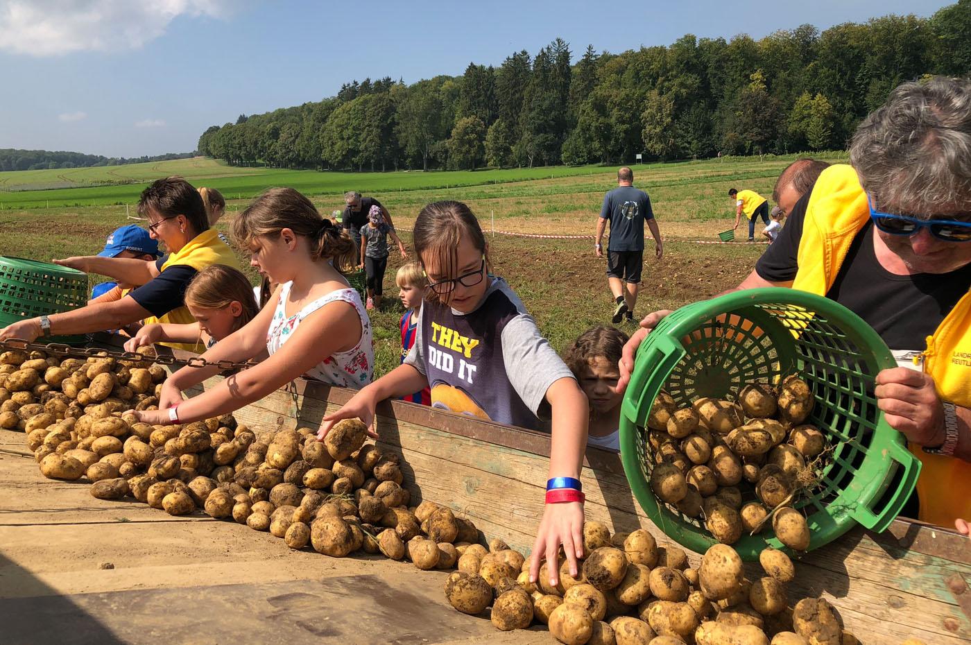 Kartoffelfest 2018_Foto Bräuninger_094