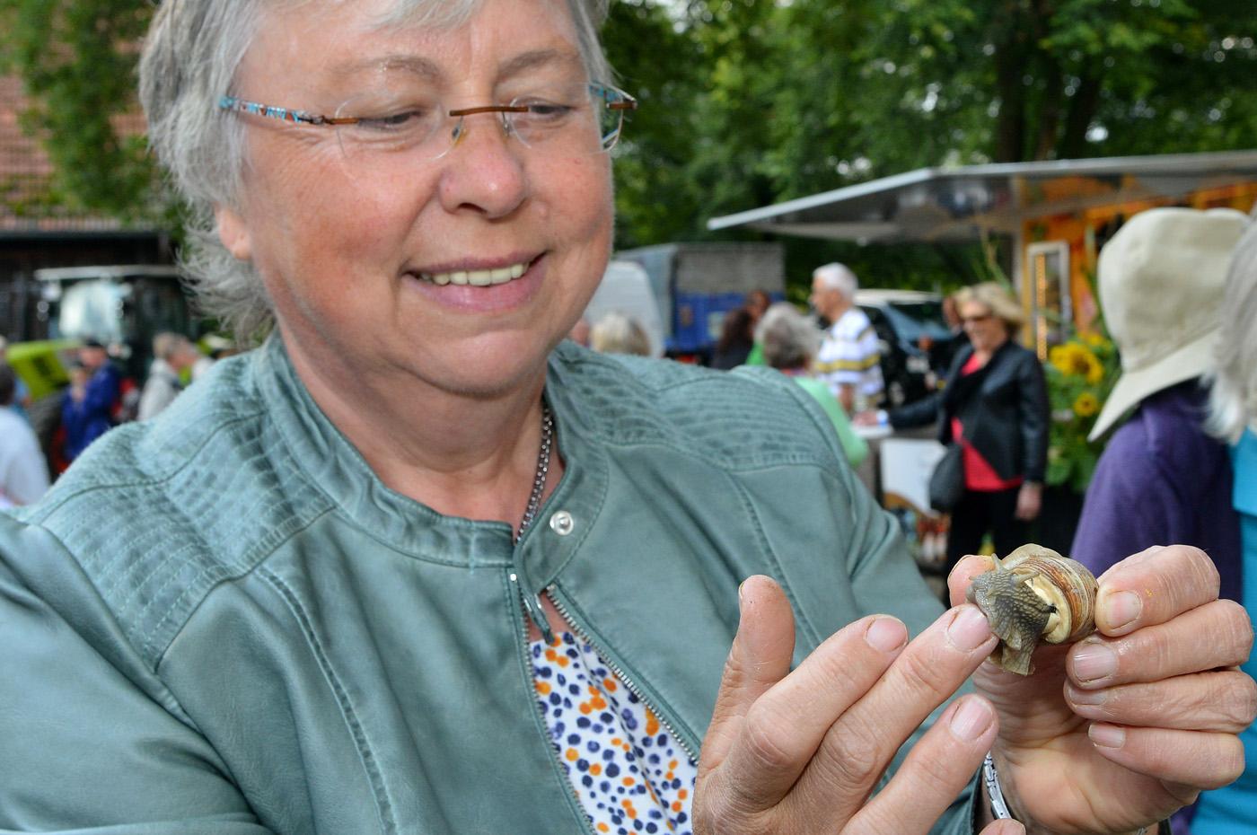 bilder-0709-12kartoffelfest-niethammer